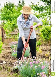 triyae com u003d backyard flower farmer various design inspiration