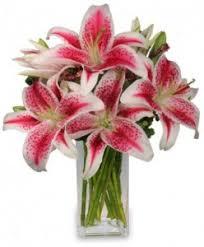 stargazer bouquet stargazer arrangement in bowie tx a cottage florist gifts