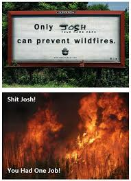 Only You Can Prevent Forest Fires Meme - page 1 of comments at the chosen one
