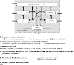 Energy Flow In Plants Concept Map Parallel Ecological Networks In Ecosystems Philosophical