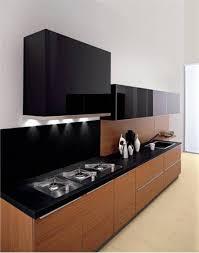 Modern Wooden Kitchen Cabinets Modern Wooden Kitchen Storage Cabinet Closed To White Fur Carpet