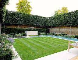 Privacy Backyard Ideas 15 Ways To Gain Privacy In Your Yard