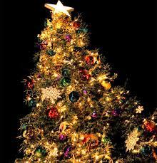 Christmas Tree Lighting Christmas Tree Lighting Iba