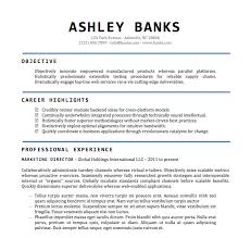 Best Job Objective For Resume by Resume Examples Resume Template Word Doc Microsoft Office