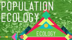 population ecology the texas mosquito mystery crash course