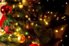 Christmas Trees With Lights Christmas Christmas Tree With White Lights Picture Free