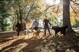 What To Do On Thanksgiving Day In New York Islanders Moved To Brooklyn But The Players And Their Dogs Stay