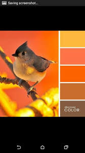 orange color shades 43 best color design images on pinterest candies candy colors
