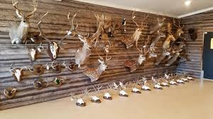 taxidermy the outpost hunting dfw taxidermist