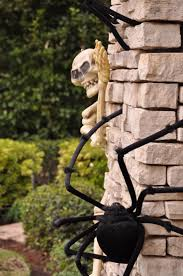talking halloween skeleton 164 best halloween skeletons u0026 skulls images on pinterest