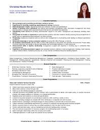 sle resume for customer service executive skills assessment core competencies resume for customer service krida info