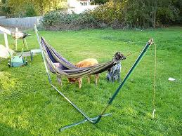 eno double hammock stand page 3