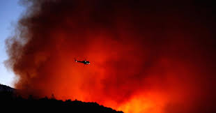 Wildfire Deaths Per Year by Homes U2013 Us Stock Info