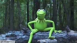 Challenge Gif Kermit The Frog Takes The Als Challenge Gif Finder