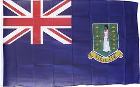 Us Virgin Island Flag Buy British Virgin Islands 3 U0027x5 U0027 Polyester Flag Blue Flagline