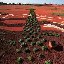 The Australian Botanic Garden On The Australian Garden By Cullity Lethlean