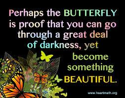 181 best butterfly wisdom images on butterflies