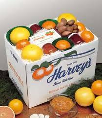 fruit boxes merritt island grapefruit indian river oranges ruby