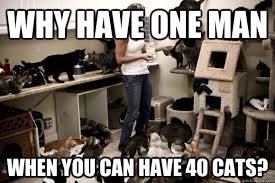 Funny Cat Lady Memes - why have one man when you can have 40 cats cat lady quickmeme