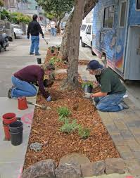Types Of Garden Mulch Soil Mulch U0026 Nutrition Friends Of The Urban Forest