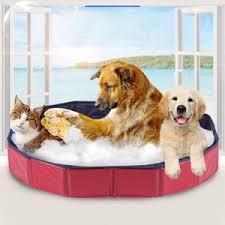 bassine pour bain de si e bassine pour chien achat vente pas cher