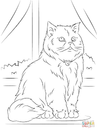 cats coloring pages persian cat coloring pages omeletta