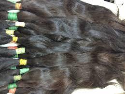 russian hair southern russian hair whiterussian hair selling russian