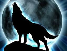 wolves of the beyond images glowing moon wallpaper and background