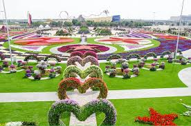 flower places cool places to see flowers dubai miracle garden grower direct
