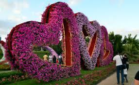 mishmreow travel dubai miracle u0026 butterfly garden