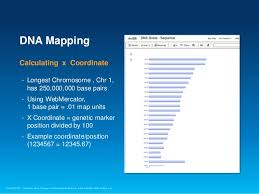 dna mapping dna guide tech summary mapping genomes w gis