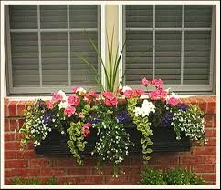What To Plant In Window Flower Boxes - window flower box ideas for never ending season u2014 smith design