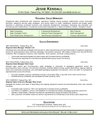 Resume Sample For It Jobs by Resume Business Manager Resume Cover Letter Sample For It Job