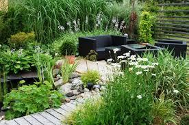Backyard Plant Ideas Small Simple Backyard Ideas On A Budget Best House Design