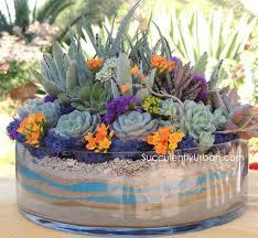 succulent arrangements succulent arrangement 124 e1395259904841 720x664 jpg
