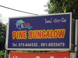 pine bungalow krabi 99 moo2 t nongtalay muang krabi klong muang beach