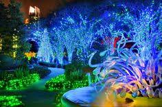 callaway gardens fantasy lights groupon atlanta botanical garden deal of the day groupon atlanta atlanta