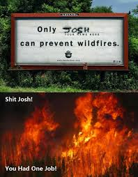 Only You Can Prevent Forest Fires Meme - only josh can prevent wildfires you had one job know your meme