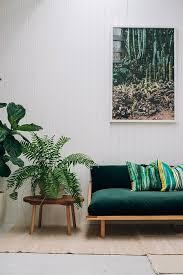 Home Decor Aus Zimmerfarne Sehen Toll Aus Und Sind Wahre Luftreiniger