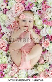 baby flowers baby flowers stock photo 631827794