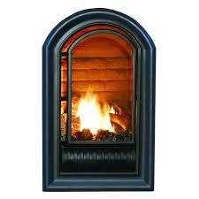 lovely ventless fireplace insert suzannawinter com