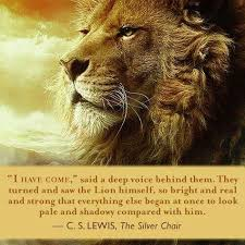 291 best narnia images on pinterest chronicles of narnia book
