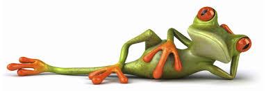 tree frog international linkedin