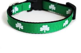 st patrick u0027s day collection you had me at woof