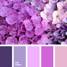 lilac color pale lilac color color palette ideas