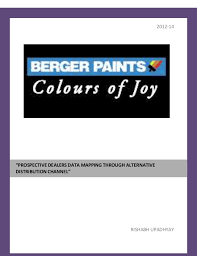 summer internship report of berger paints