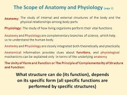 Structure Of Human Anatomy Lecture 1 Fundamentals 1 Ppt Video Online Download