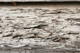 two free really rough rotting wood background images www