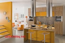 peinture pour cuisine moderne peinture cuisine tendance pour idees de deco de cuisine ides