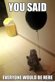 Birthday Meme Cat - sad birthday cat weknowmemes